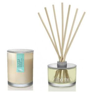 ECOYA Metro Jar Candle And Reed Diffuser Set - Lotus Flower
