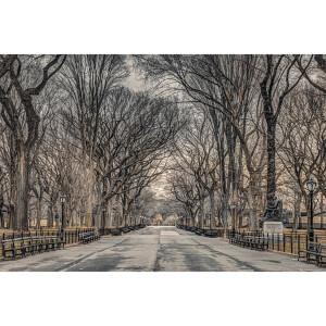Assaf Frank New York Central Park - 61 x 91.5cm Maxi Poster