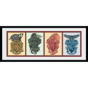 Harry Potter House Animals - 30 x 12 Inches Framed Photograph