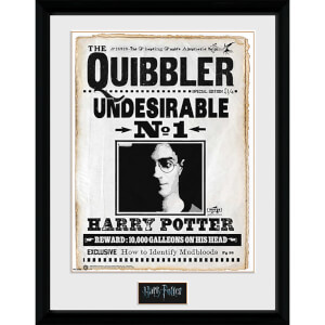 Harry Potter Quibler - 16 x 12 Inches Framed Photograph