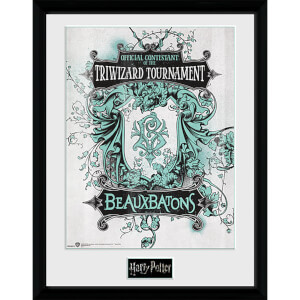 Harry Potter Triwizard Beaux Batons - 16 x 12 Inches Framed Photograph