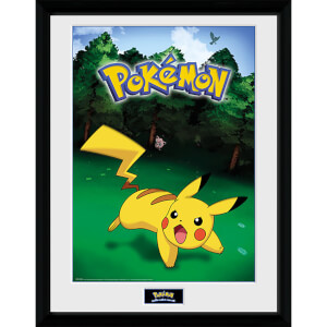 Pokémon Catch - 16 x 12 Inches Framed Photograph