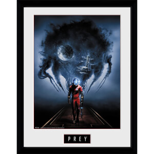Prey Key Art - 16 x 12 Inches Framed Photograph