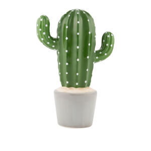 Sass & Belle Cactus Money Box from I Want One Of Those