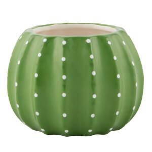 Sass & Belle Cactus Plant Pot