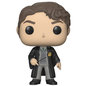 HARRY POTTER - TOM RIDDLE POP! VINYL
