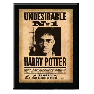 Harry Potter Plakette Harry Potter Undesirable No. 1