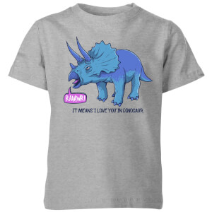 Rawr It Means I Love You Kids' T-Shirt - Grey