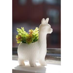 Lloyd der Llama Blumentopf