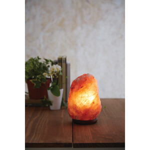 Premier Housewares Natural Salt Lamp - Small