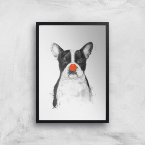 Balazs Solti Red Nosed Bulldog Art Print