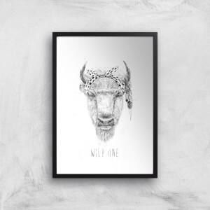 Balazs Solti Wild One Art Print