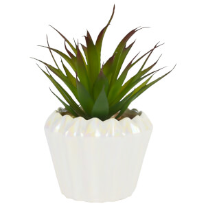 Large Plant in Geometric Pot - Pearlescent