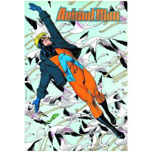 Vertigo - Animal Man Vol 07 Red Plague