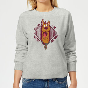 Scooby Doo Where Are You? Women's Sweatshirt - Grey