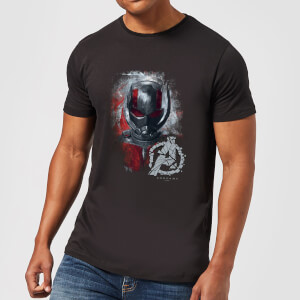 Avengers Endgame Ant Man Brushed Men's T-Shirt - Black