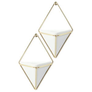 Umbra Trigg Wall Vessel - White Brass (Set of 2)