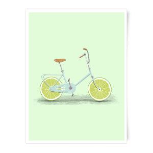 Citrus Lime Art Print