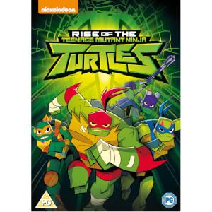 Rise of the Teenage Mutant Ninja Turtles (Self-Titled)