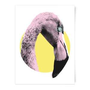 Flamingo With Circular Background Art Print