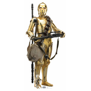 Star Wars (The Rise of Skywalker) C-3PO Lifesized Cardboard Cut Out from I Want One Of Those