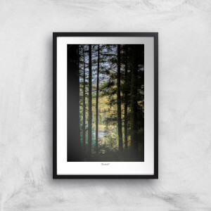 Macclesfield Forest Giclée Art Print