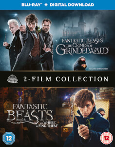 Fantastic Beasts: 2 Film Collection