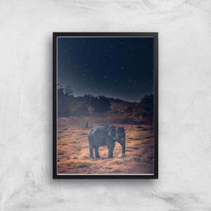 Elephant At Night Giclee Art Print
