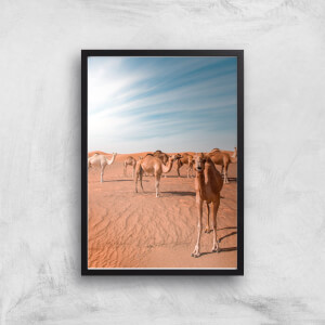 Curious Camel Giclee Art Print