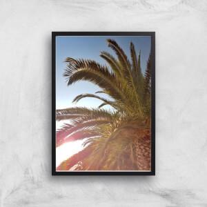 Palm Leaves Sun Glare Giclee Art Print
