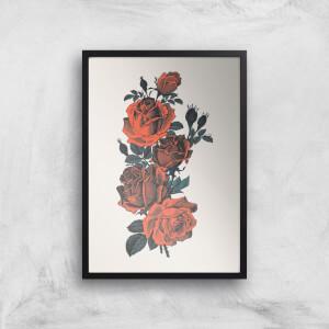 Roses Giclee Art Print
