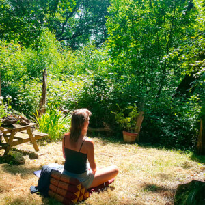 Forest Bathing for Two