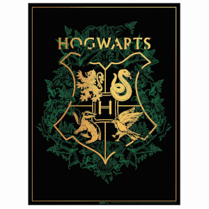 Harry Potter Foil Screenprint