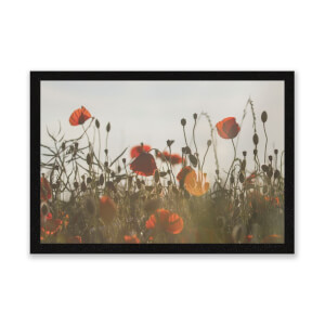 Summer Flowers Entrance Mat