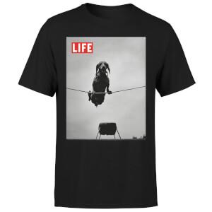 LIFE Magazine Dachshund On A Wire Men's T-Shirt - Black