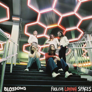 Blossoms - Foolish Loving Spaces LP