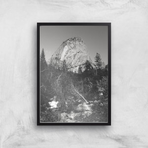 Yosemite Tree Giclee Art Print