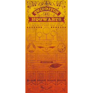 Harry Potter Premium Limited Edition Art Print : Quidditch Rules