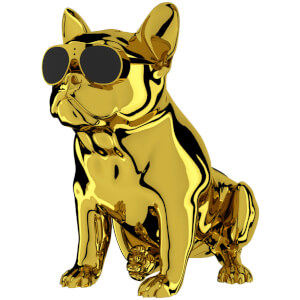JARRE AeroBull XS1 - Limited Edition Chrome Gold Duo