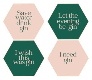 Save Water Drink Gin Hexagonal Coaster Set