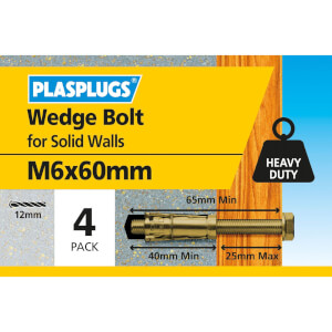 Plasplugs Anchor Bolt M6 x 60mm