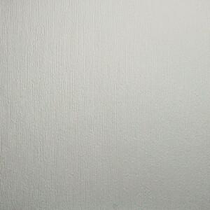 Superfresco Blown Paintable Vinyl Wallpaper