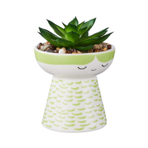 Baby Planter with Succulent - Green