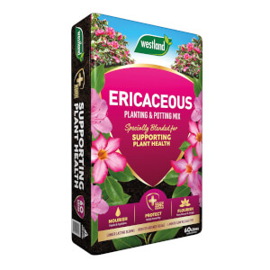 Westland Ericaceous Planting and Potting Mix 60L