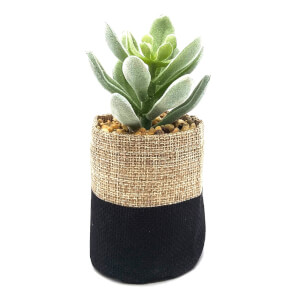 Small Plant in Sack - Black & Natural