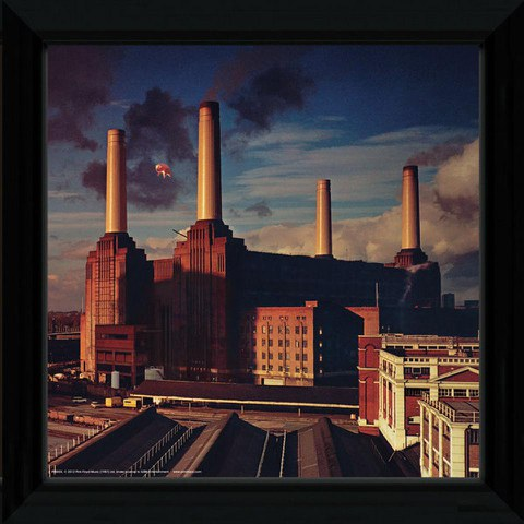Pink Floyd Animals - 12