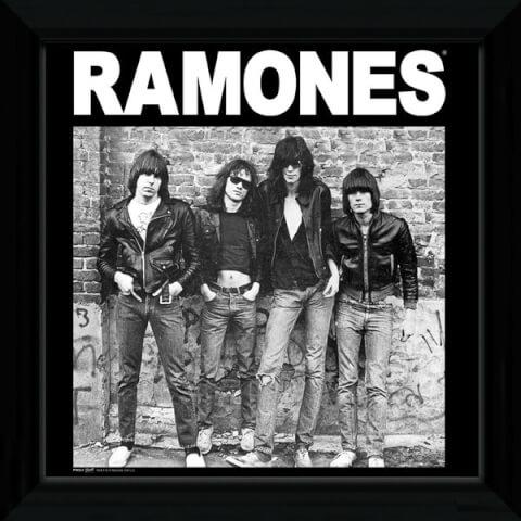 The Ramones Album - 12