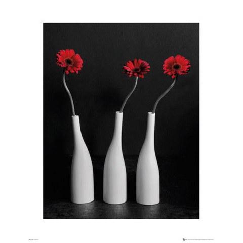 Flower Gerberas Bottles - Mini Poster - 40 x 50cm