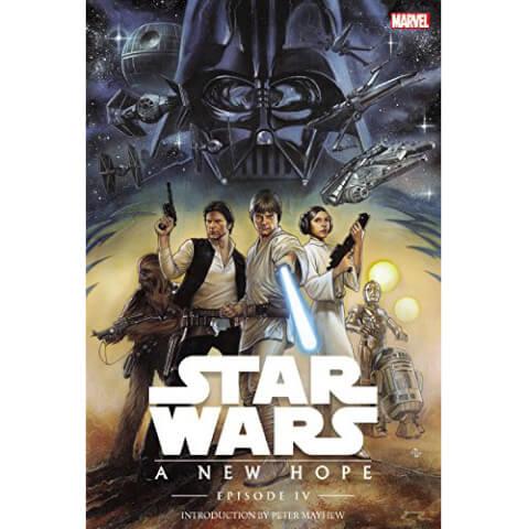 Star Wars: Episode IV: A New Hope Hardcover Graphic Novel