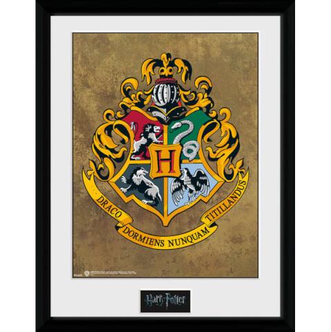 Harry Potter Hogwarts Framed Photographic - 16